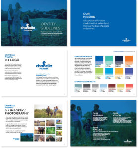 Chanelle Pharma identity guide 2